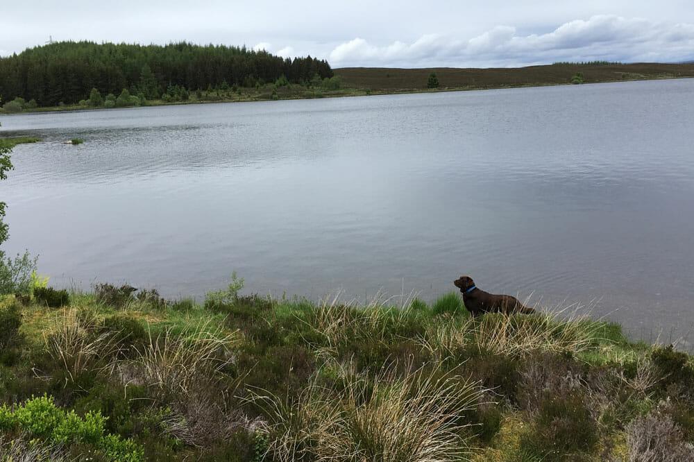 Loch Kinardochy Inu