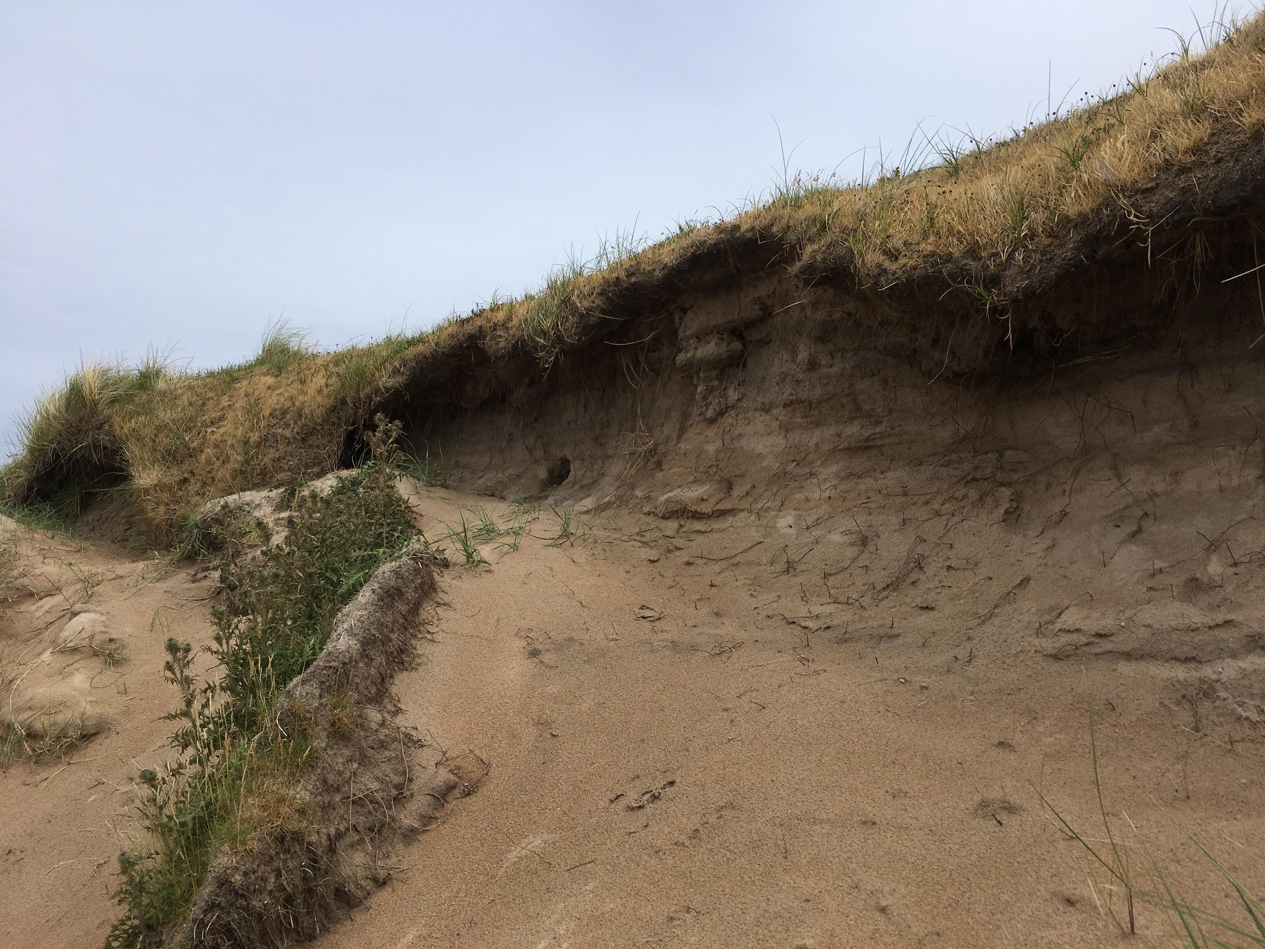 Laggan Beach