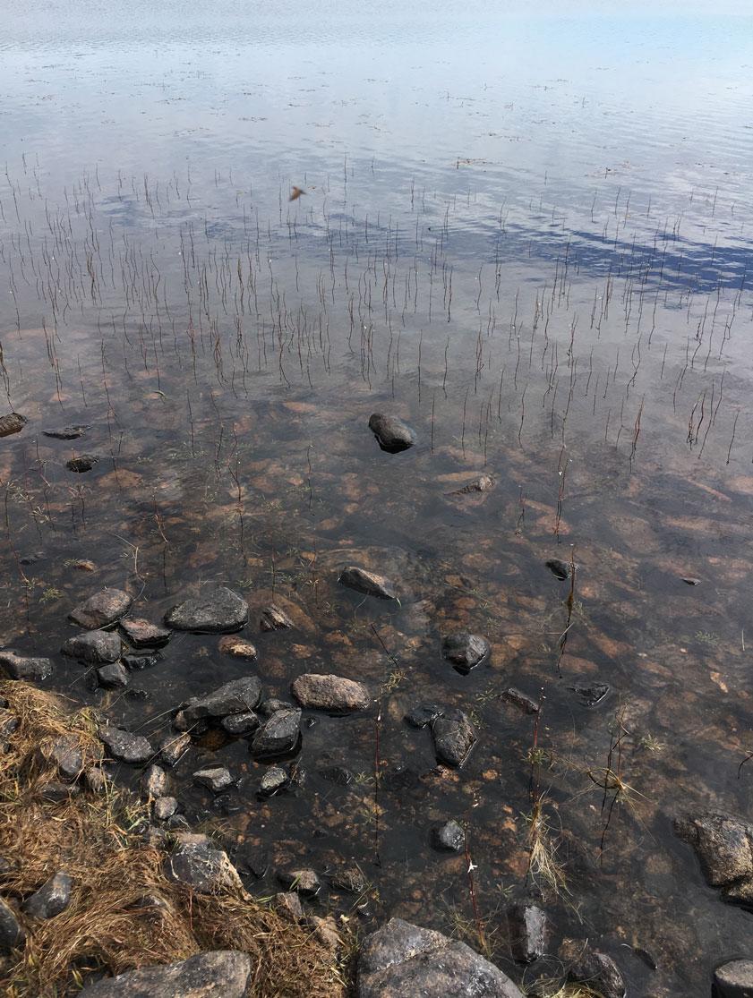 Loch Gerudaidh